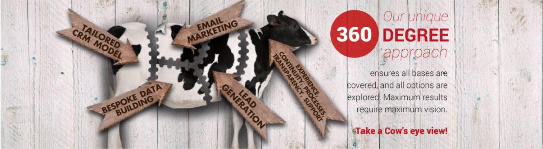 From Cash Cow Marketing website on 360 degree perspective
